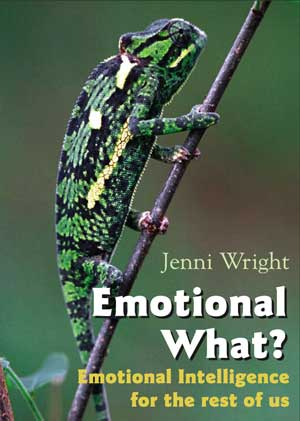 Emotional Intelligence for the rest of us